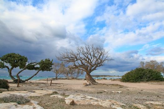 Крит сочетает в себе и удивительно красивую, девственную природу и современный туристический центр