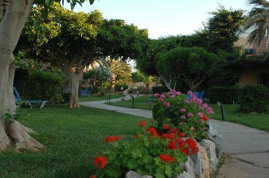 Отель Anissia Beach очень уютно и красиво - много зелени и цветов
