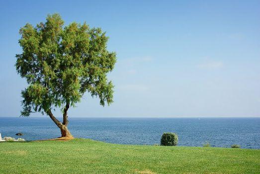 Море и пляж у отеля необыкновенно красивы